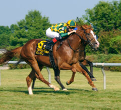 Gofu sizzles in Kent Stakes