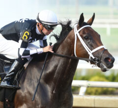 Shedaresthedevil Scorches the Competition to Win Indiana Oaks