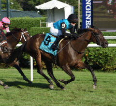 She's My Type Set for 4-Year-Old Bow in License Fee