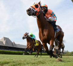 Somelikeithotbrown Sizzles in Bernard Baruch