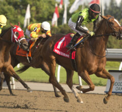 Queen's Plate Preview: Curlin's Voyage Embarks on Toughest Test Yet