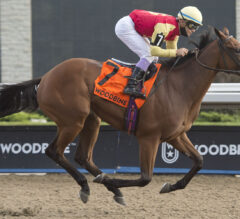 Ontario-Breds Rule All 4 Woodbine Stakes Sunday