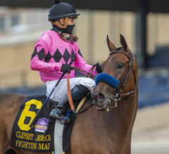 Zenyatta Preview: Fighting Mad Goes for the Treble