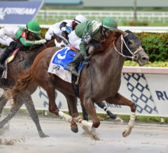 Stonehedge Doubles Down As Go Jo Jo Go, Breeze On By Win Respective Florida Sire Divisions