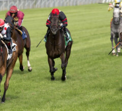 Casse Sends Out Talented Turf Duo In Competitive King Edward