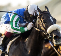 Maxim Rate Flies Late to Win CCT and TOC