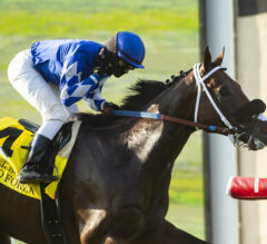 Mo Forza Makes Monstrous Return in Del Mar Mile