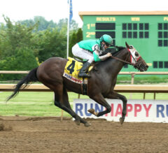 Pico d'Oro Breaks his maiden in RUNHAPPY Juvenile Stakes