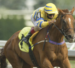 Pink Lloyd Aims At Second Straight Bold Venture Score