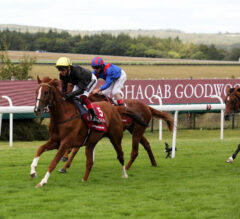 Stradivarius creates history with fourth victory in G1 Al Shaqab Goodwood Cup