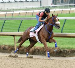 Kentucky Oaks Preview: Top Fillies Ready for a Showdown