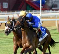 Belmont Oaks Preview: Antoinette Goes for Two in a Row