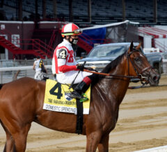Domestic Spending Makes 'Em Pay in Saratoga Derby