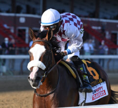 Saratoga Erupts as Tiz the Law Takes Travers