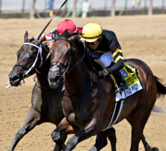 Vexatious Springs the Upset in Personal Ensign