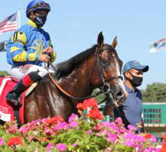 Tropical Turf Preview: Analyze It Hoping to Make Amends