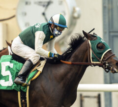 Big Fish Defeats a School of Runners in Juvenile Turf