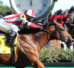 Defending Champ Digital Age Headlines Old Forester Bourbon Turf Classic
