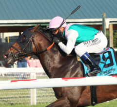 Flavius Sets New Fast Time in Tourist Mile