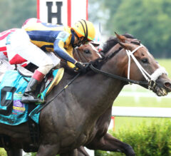 Racing Dudes Three Stars of the Week: Spotlight on Kentucky Downs