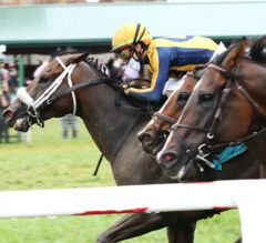 Imprimis Outduels Rivals to Win Runhappy Turf Sprint