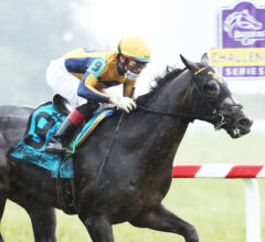 Springboard Mile Preview: Outadore Tries Dirt for First Time