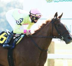 Plum Ali Overcomes Troubled Start to Win Mint Juvenile Fillies