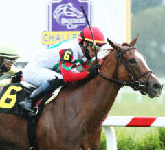 Regal Glory Outlasts Mitchell Road in Ladies Turf