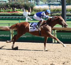 Holy Bull Preview: Gulfstream's Derby Prep Schedule Ready to Roll
