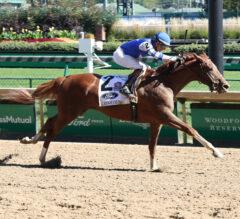 Kentucky Jockey Club Preview: Sittin On Go Goes for Churchill Downs Double