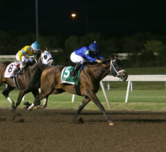 Shared Sense Proves Best in Oklahoma Derby