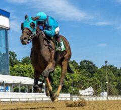 Laurel Park Stakes Recaps