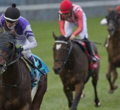 Belichick Breaks Maiden in Breeders' Stakes, Denying Mighty Heart's Triple Crown
