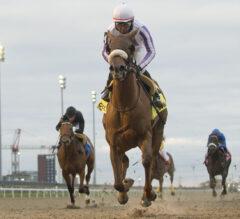Racing Dudes Three Stars of the Week: Woodbine Shines on Quiet Weekend
