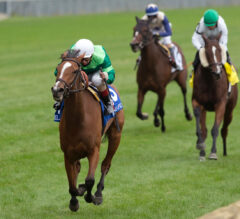 Etoile stars in E. P. Taylor, repelling late bid of outsider Court Return in Grade 1 turf fixture