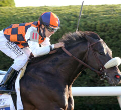 Ivar Sheds Blinkers Successfully in Shadwell Turf Mile