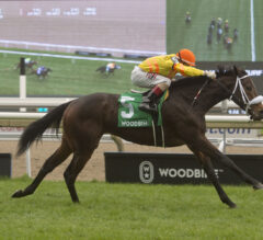 Merveilleux Turns Tables on Rivals in Wonder Where