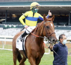 Red Knight Tops Field of 10 for Saturday's Elkhorn