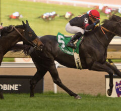 Silent Poet, Stein engineer emotional Nearctic Stakes score for Gonzalez
