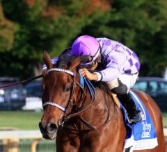 Simply Ravishing Lives up to Name with Dominating Alcibiades Performance