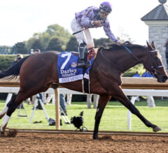 Golden Rod Preview: Simply Ravishing Ready to Bounce Back From Breeders' Cup Blunder