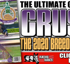 Racing Dudes 2020 Breeders' Cup Wagering Guide and Picks Presale