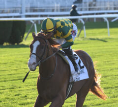 Gufo Too Strong in Stretch of Belmont Derby