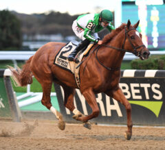 Mr. Buff's Quest for Graded Stakes Win Resumes in Westchester