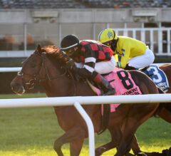 Step Dancer Slips Up The Rail In Awad