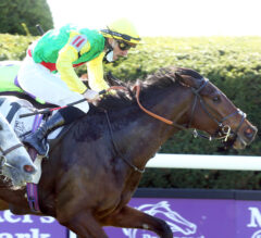 Audarya Catches Rushing Fall Late In Filly & Mare Turf