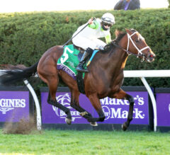 Aunt Pearl Easily Wires Juvenile Fillies Turf