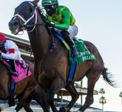Arklow's Class Prevails in Hollywood Turf Cup