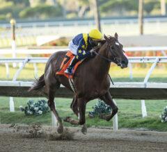 Racing Dudes Three Stars of the Week: Chestnut Juvies Rock the West Coast