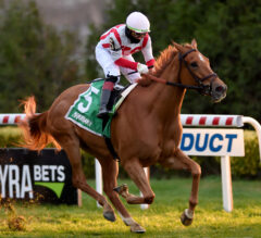 Duopoly goes gate to wire to win first stakes in Winter Memories